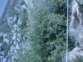 via ferrata puerta agua comares-7