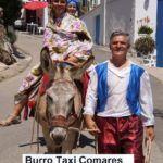 Burro Taxi Comares